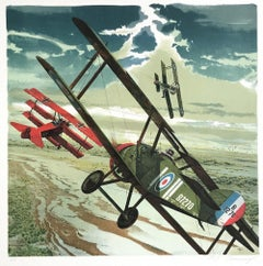 DARK SKIES Signed Lithograph WW I Fighter Aircraft, Air Combat, Aviation History