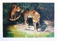 OUT OF THE SHADOWS Signed Lithograph, Wildlife Portrait, Jungle Animals, Leopard