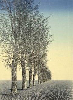 Spirit of the Woods XXXVII (A spiritual aura emanates from a serene landscape)