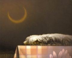 Wait-III (A shaggy haired dog sleeps on checkered cloth under crescent moon)