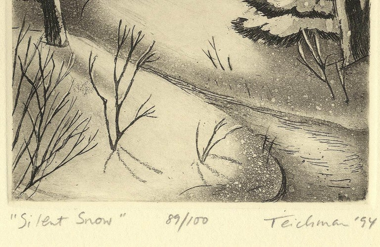Silent Snow (Poetical imagery and Christmas memories in New England) 2