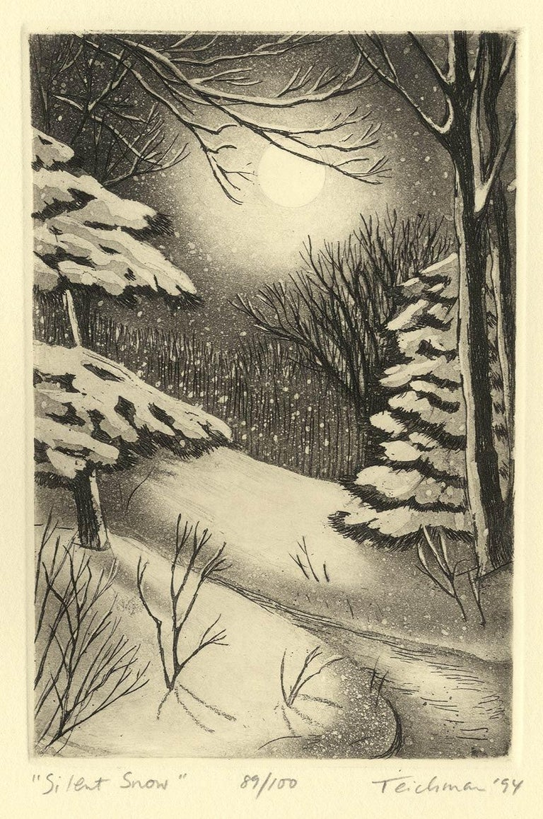 Silent Snow (Poetical imagery and Christmas memories in New England) 3