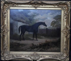Trumpator Black Racehorse - British Old Master oil painting pupil Joshua Reynold