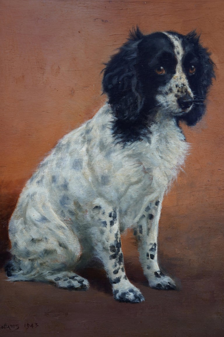 Portrait of Freda the Springer Spaniel - British animal oil painting dog art - Realist Painting by Florence Mabel Hollams