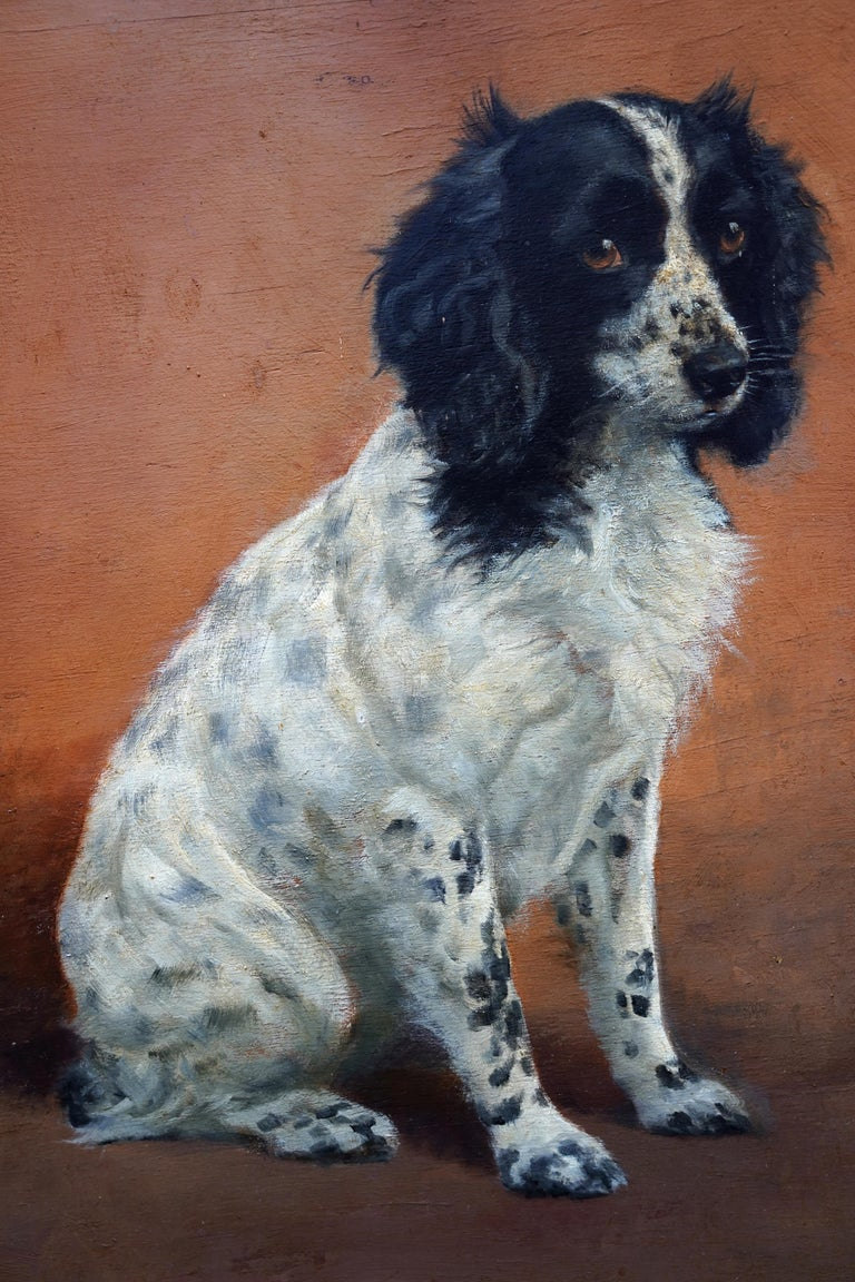 Portrait of Freda the Springer Spaniel - British animal oil painting dog art - Brown Animal Painting by Florence Mabel Hollams