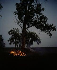 Omaha Sketchbook: Fire and Tree, Omaha, NE - Contemporary Photography