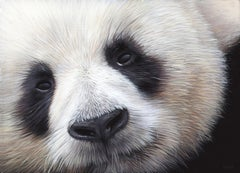 Huan Huan (Panda Geant) , acrylic on medium , size with frame 21.3 x 27.1 cm