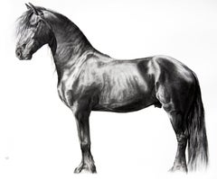 Comme sur un nuage, charcoal and graphite on paper , size with frame 87 x 116 cm