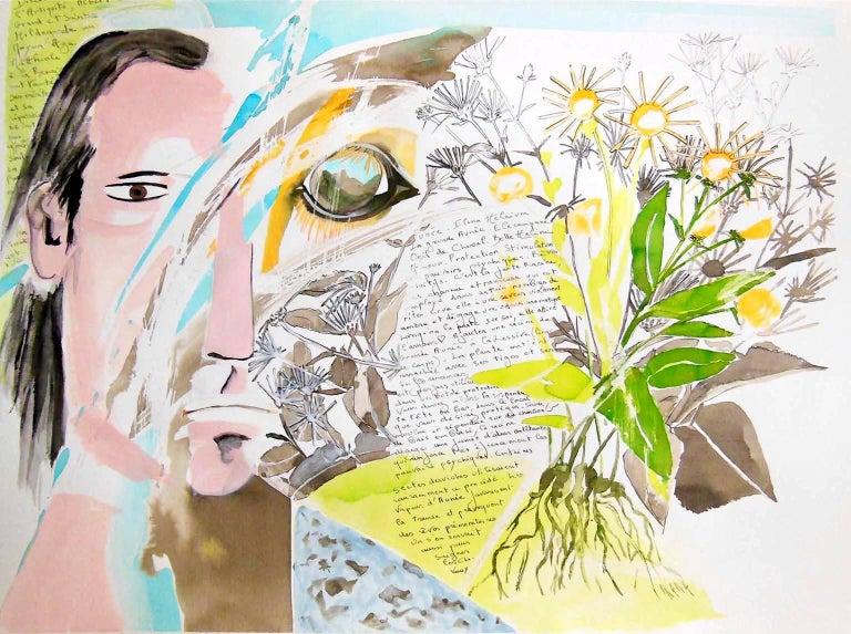 Plant and Spirit, Elecampane 1