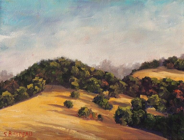 Steven Guy Bilodeau Landscape Painting - Gentle Hills