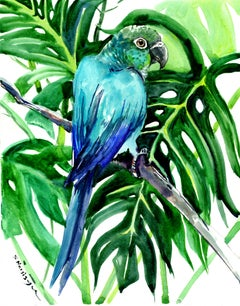 Green Conure and Philodendron, Tropical