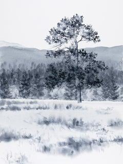 Rocky Mountain Native