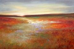 Light Across The Meadow