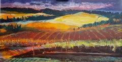 Sunset at the Vineyard