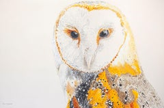 Athena the Barn Owl #3