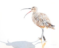 Whimbrel #11 Speaking Out, Original Painting