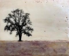 Plum Tree, Original Painting