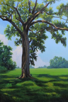 Oak at the Indian Lands, Oil Painting