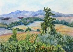 Sonoma Vineyards, Original Painting