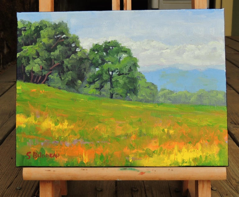 <p>Artist Comments<br />This is a plein-air painting of a field in Lake County California.  </p><p>About the Artist<br />Steven Guy Bilodeau prefers to create his works in one session, so that he can hold on to the emotional connection between