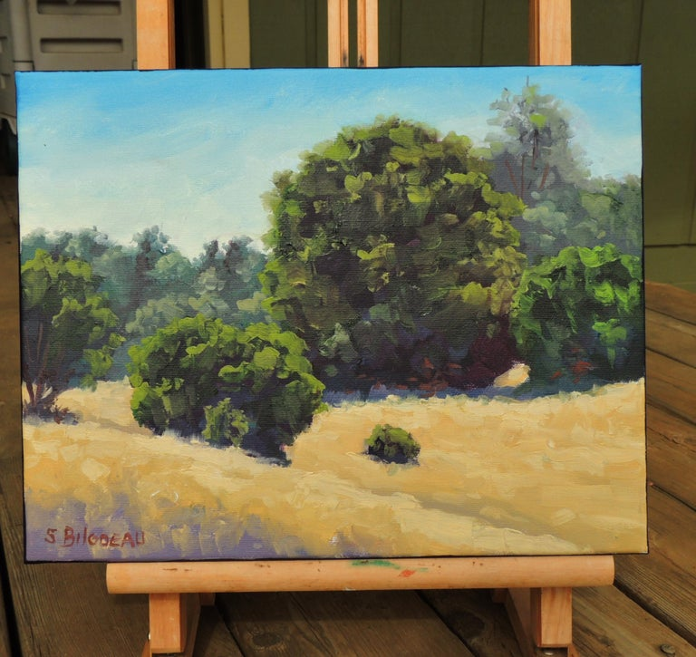 <p>Artist Comments<br />This is a California impressionist landscape.</p><p>About the Artist<br />Steven Guy Bilodeau prefers to create his works in one session, so that he can hold on to the emotional connection between himself and a piece. He