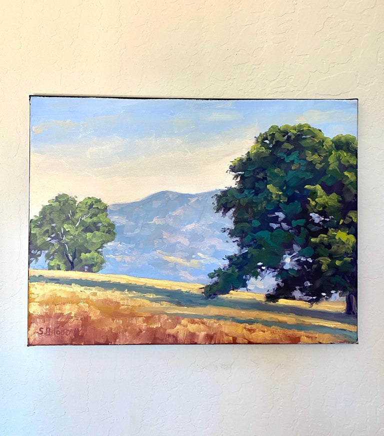 <p>Artist Comments<br>A summer evening in Sonoma County. Cool blue shadows stretch across the golden hills. Artist Steven Guy Bilodeau utilizes a classic painting technique called alla prima to create his scenic views of northern California. He