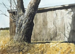 Tree Trunk and Barn