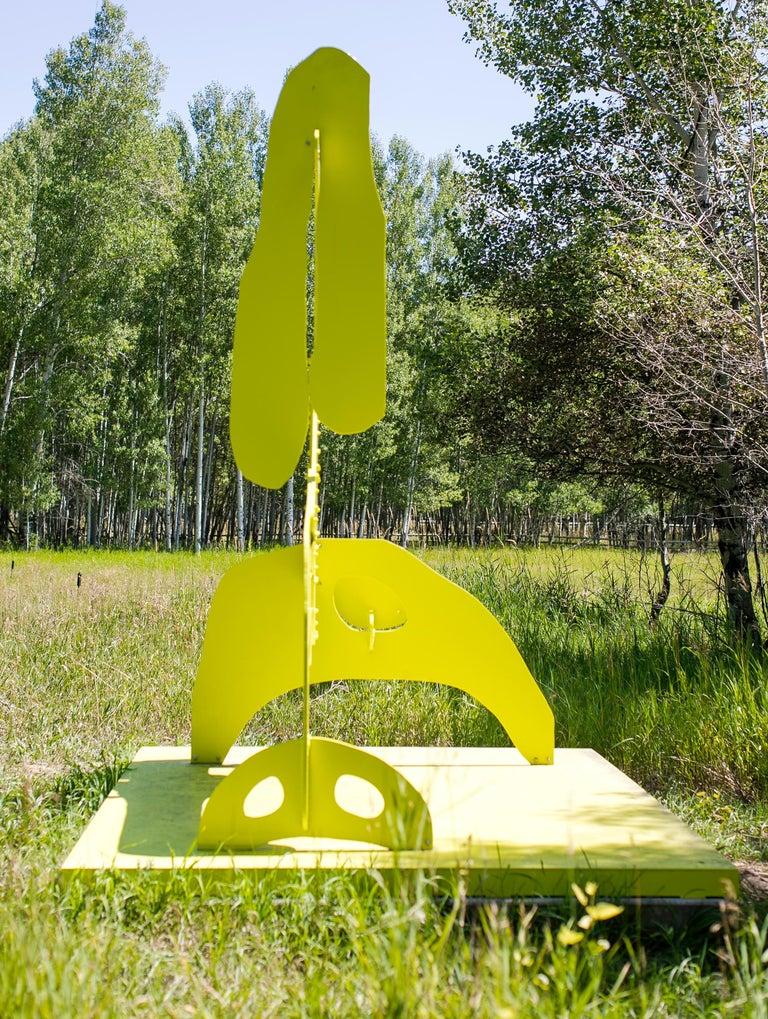 Yellow Bird Boy For Sale 1