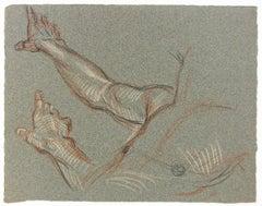 Male Torso (Studies of a Hand)