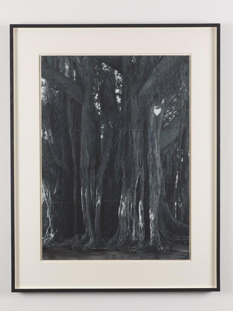 Patrick Van Caeckenbergh Landscape Art - Lamentation 3 (summer 2014)