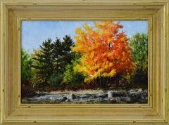 Autumn Burst