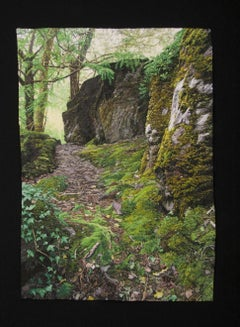 """""""Mossy Path"""", Contemporary, Framed, Embroidery, Photorealism, Nature, Landscape"""