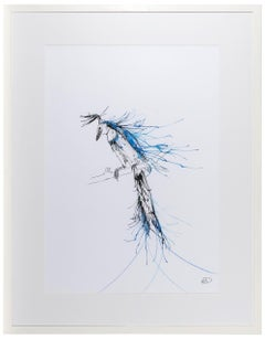 Blue Throated Jay
