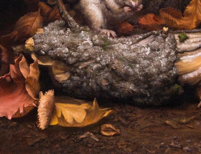 Autumn Chipmunk 3