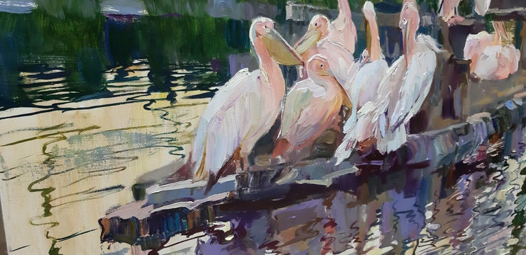 Pelicans  For Sale 2