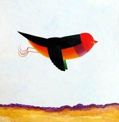 Over drylands - Gould Finch