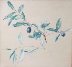 Olive Branch, South of France by pointillist  Eduard Fer, friend of Signac