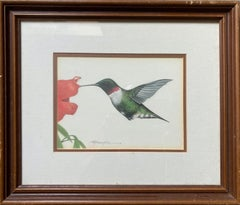 "Hummingbird (""The Whizzer"") Original Colored Pencil"