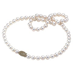 AAA Quality Round Akoya Cultured Pearl Necklace with 14 Karat Yellow Gold Clasp