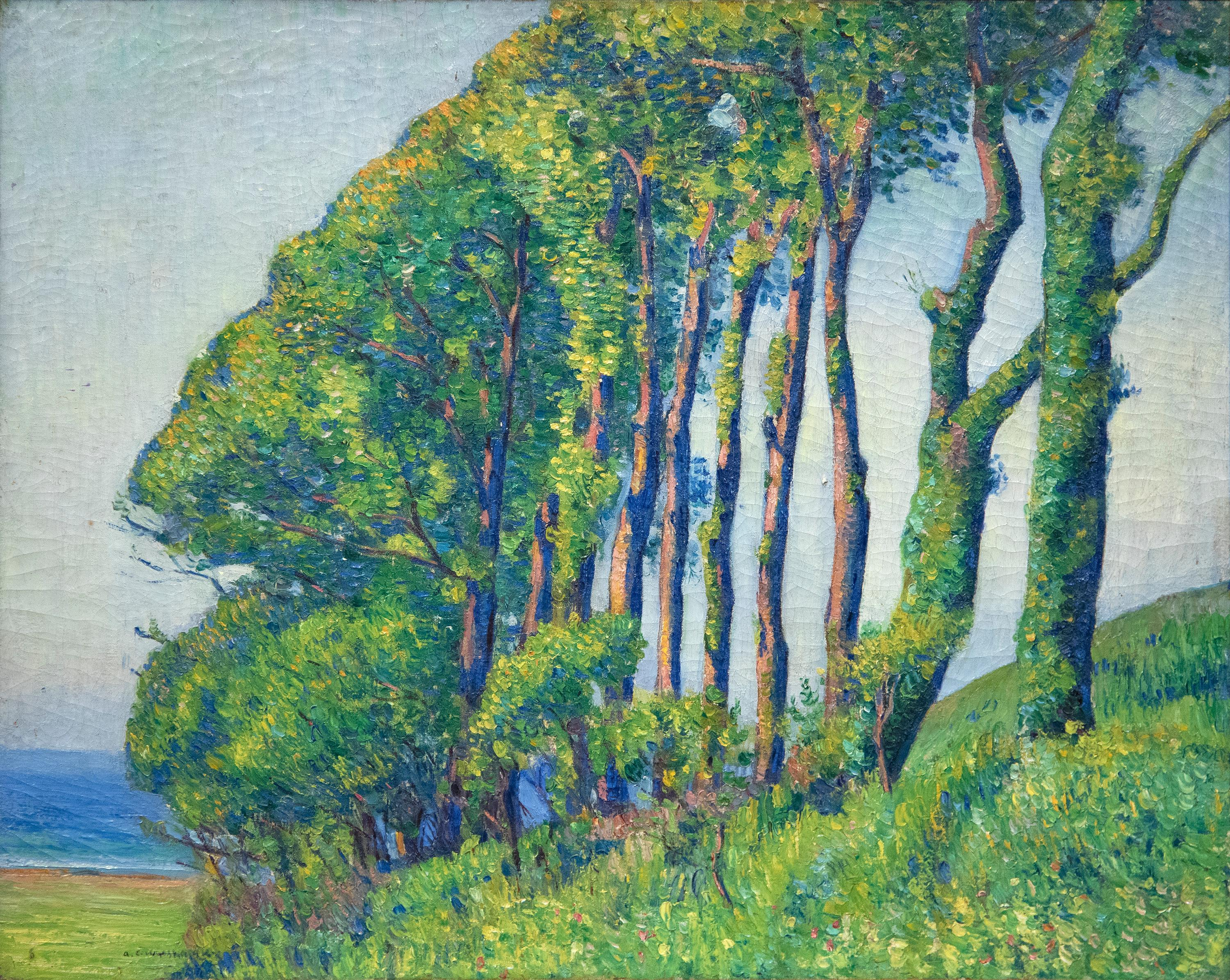 Trees in Brittany
