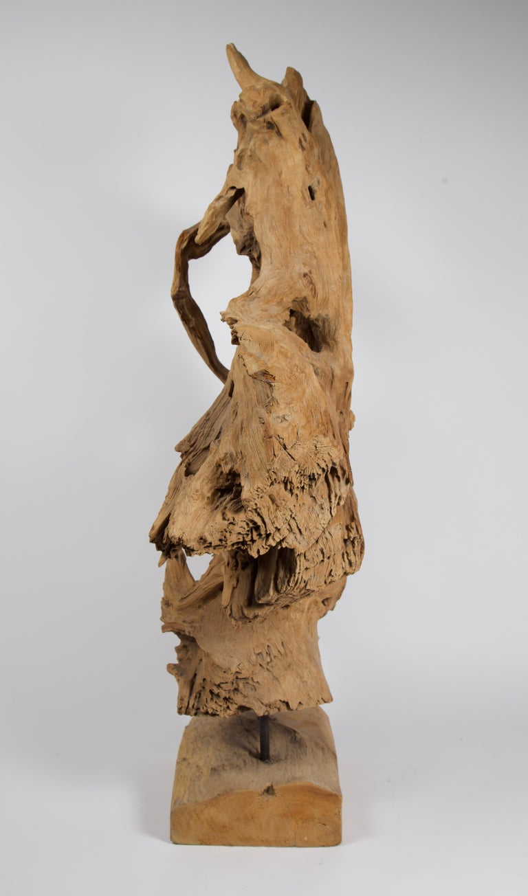 South Asian Abstract Freeform Teak Wood Sculpture For Sale