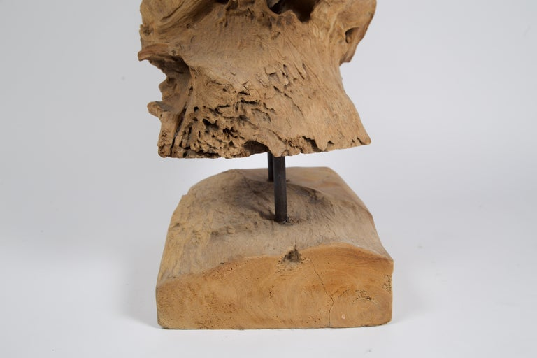 20th Century Abstract Freeform Teak Wood Sculpture For Sale