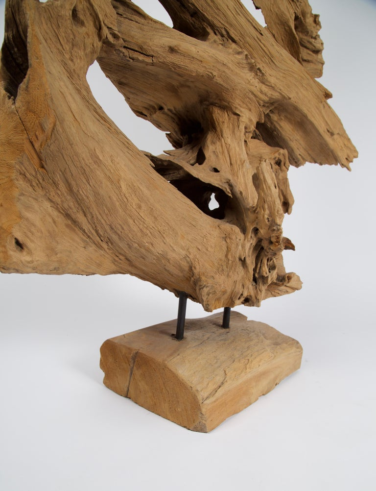 Steel Abstract Freeform Teak Wood Sculpture For Sale