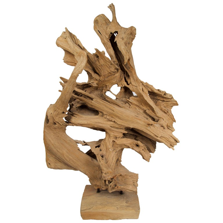 Abstract Freeform Teak Wood Sculpture For Sale