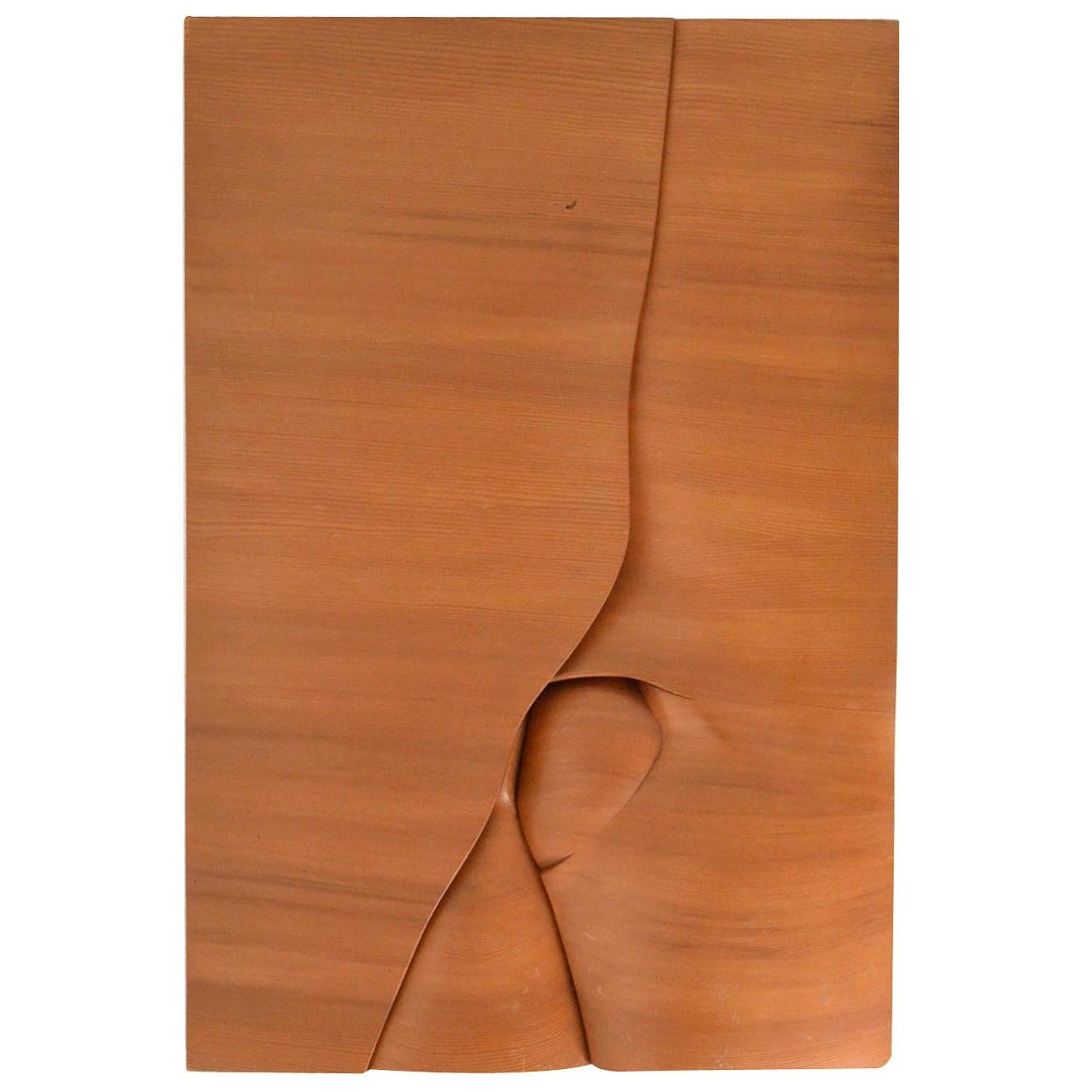 Abstract Wood Carved Relief Art