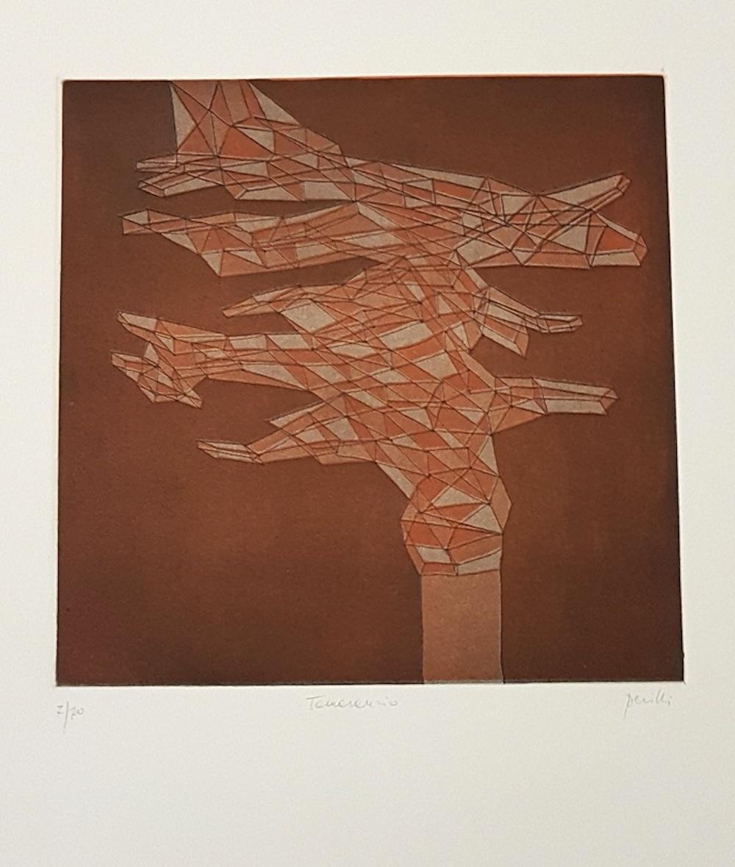 Tamarancio - Original Lithograph by Achille Perilli - 1971