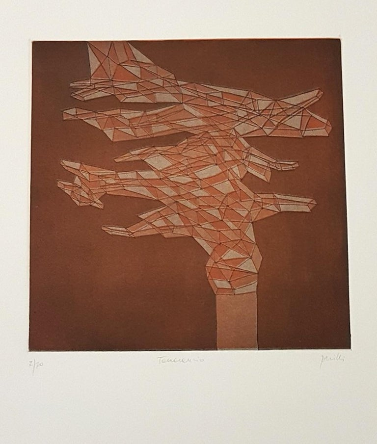 Interesting colored etching, 1971, representing an abstract composition. Edition of 70 prints. Print run, Title and signature hand-written with pencil on lower margin. In excellent condition. Sheet with embossing stamp on lower-left corner.  Image