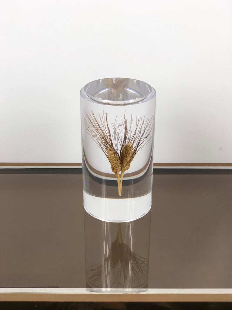 Acrylic sculpture in a cylindrical shape featuring inside an ear of wheat. The sculpture is in the Italian Modernist style and the conditions are excellent.