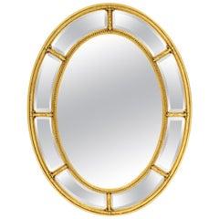 Adam Style Oval Giltwood Border Glass Mirror