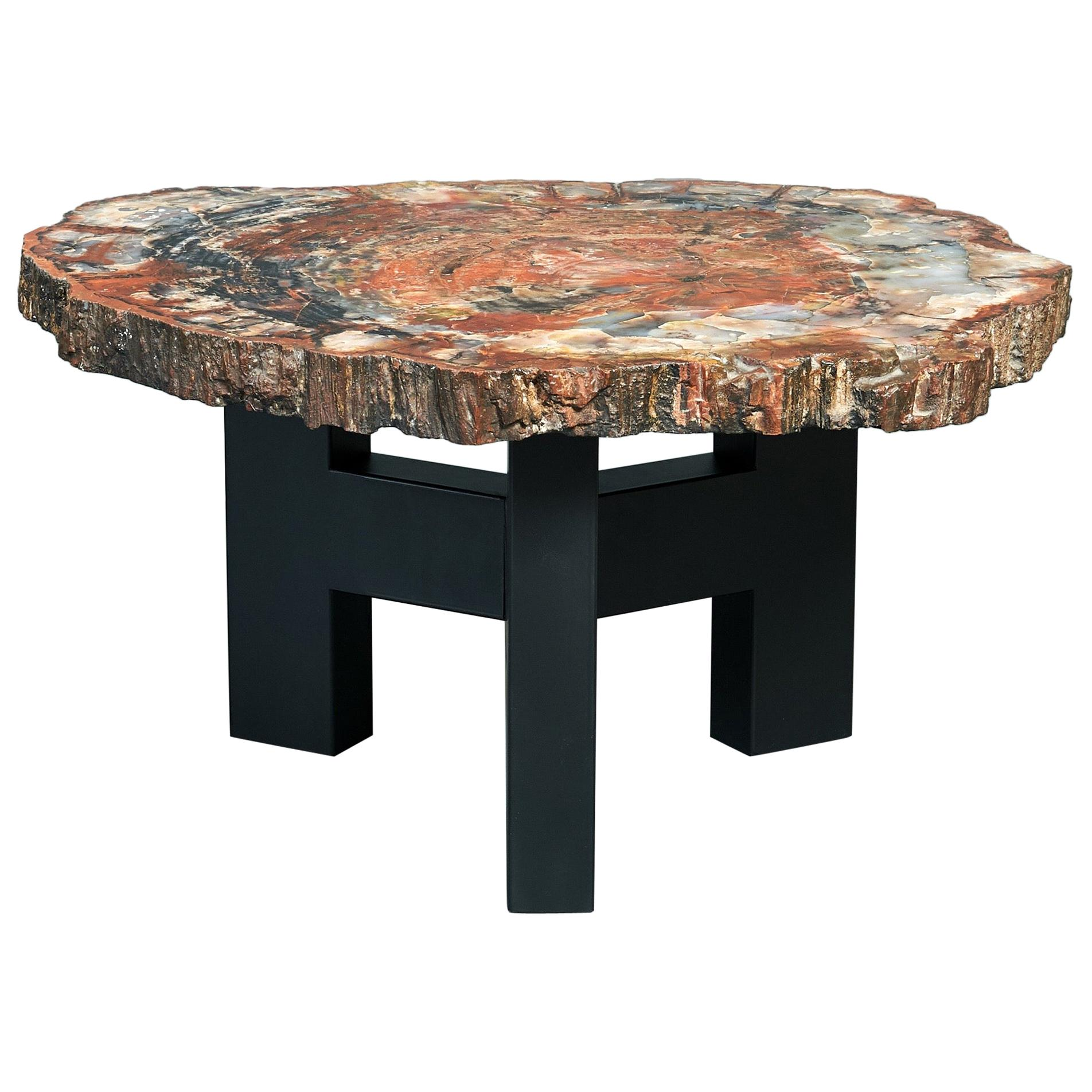 Ado Chale Rare Coffee Table in Petrified Wood and Steel, Belgium, 1968